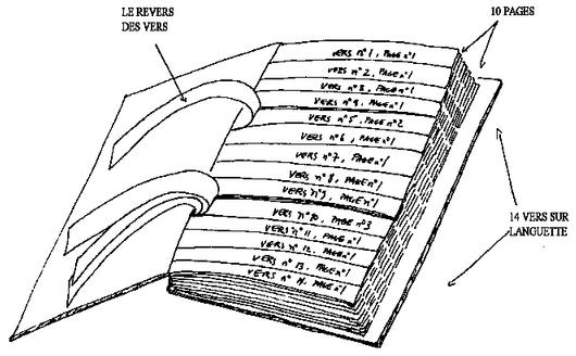 diagram showing the physical structure of Queneau's volume